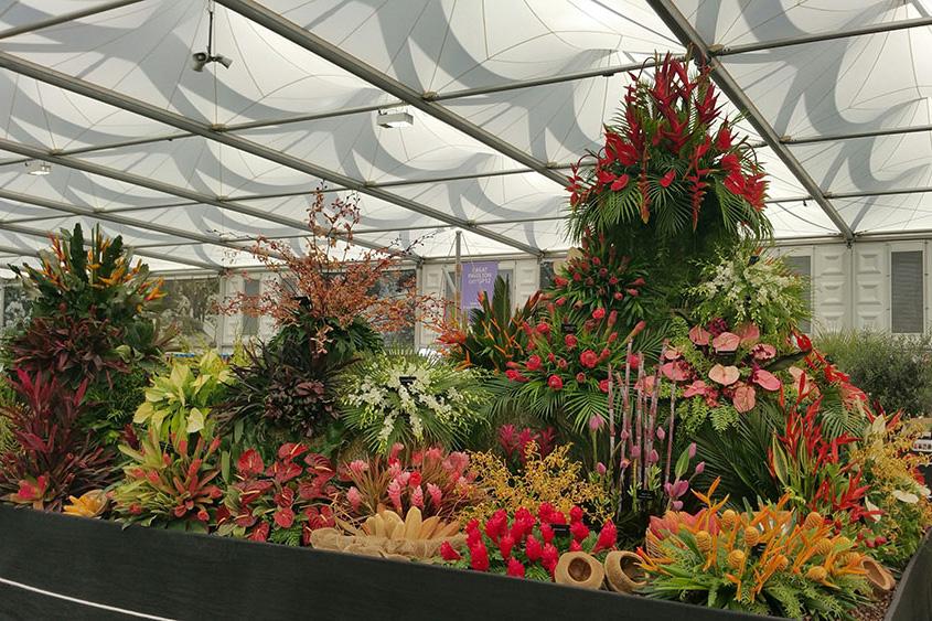 Chelsea flower show location