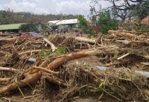 hurricane maria dominica damage sep 21 1634