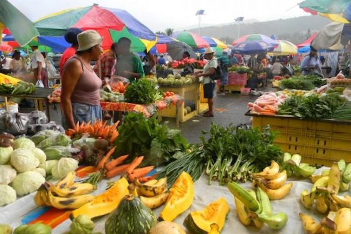 roseau market back in business this december wic news