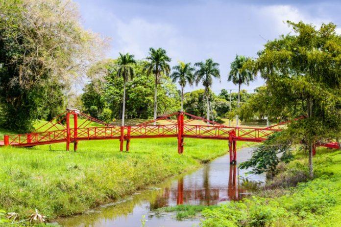 Suriname bridge