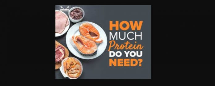 How much protein do you need.